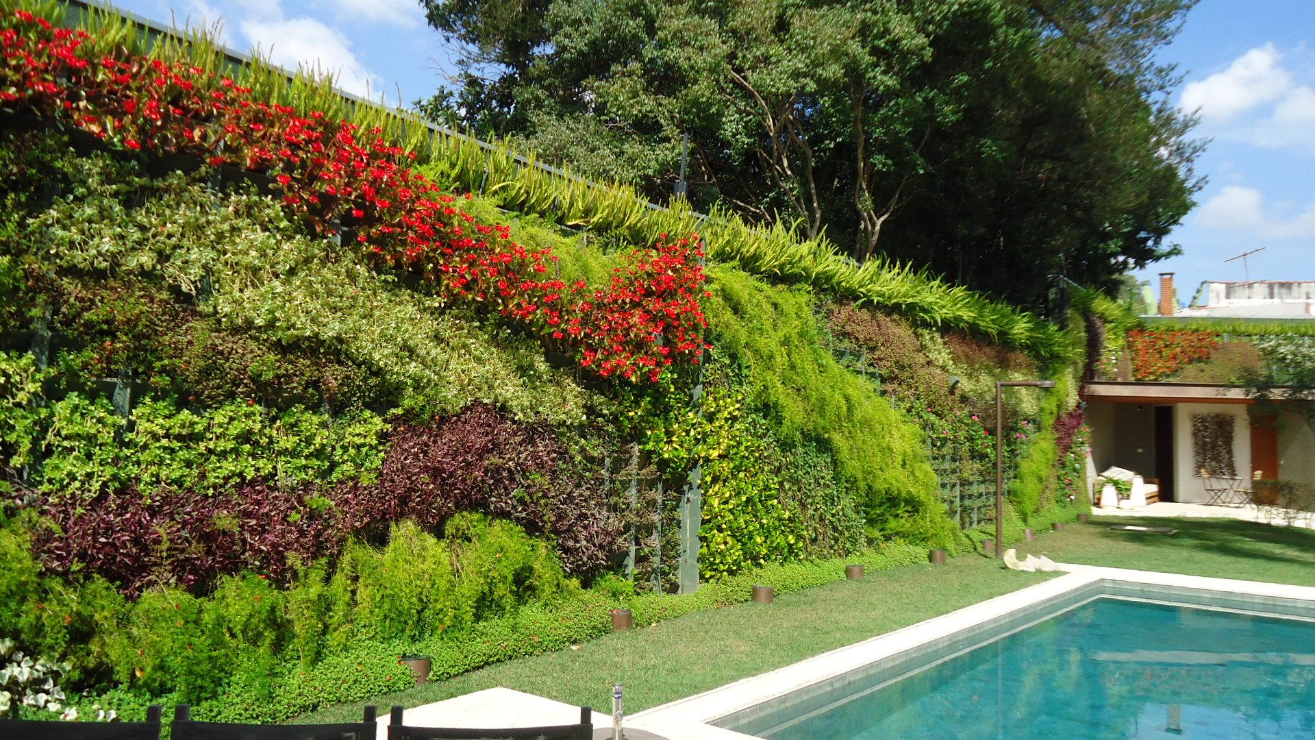 Jardim Vertical com área externa